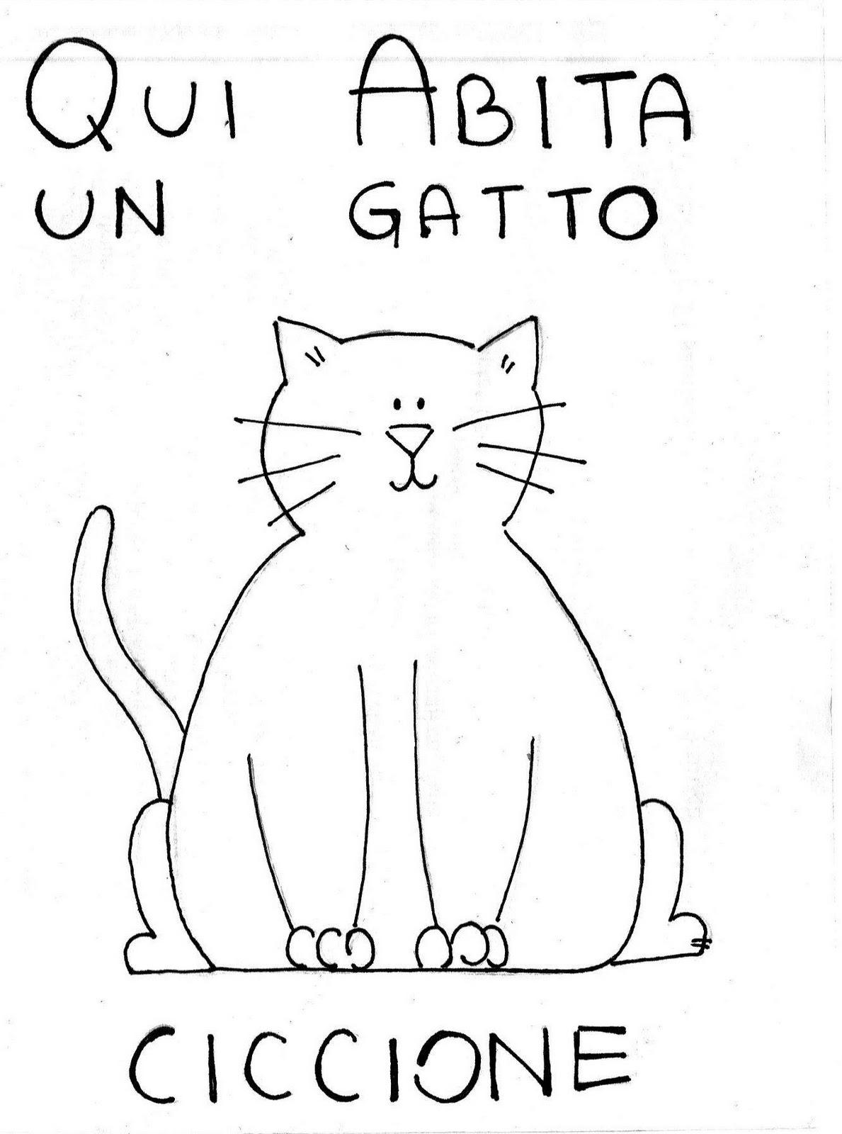 gatto_ciccione